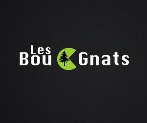 Les Bougnats