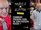 Francis & Gunter - comment prendre soin de son poisson rouge ?